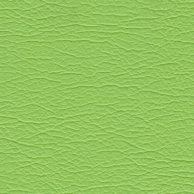 Planmeca Ultra Lime 4482