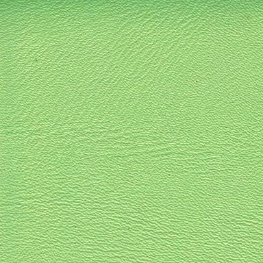 Anthos Polynesian Green 123