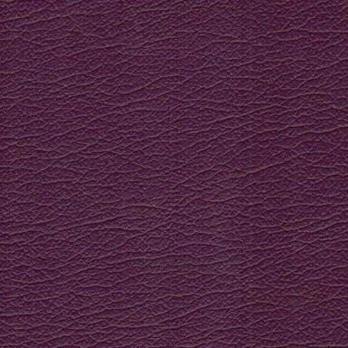 Planmeca Ultra Purple 9333