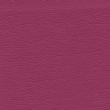 Midmark Ultraleather Sorbet 733
